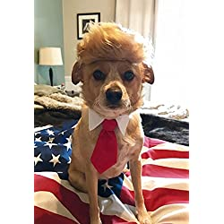 Trump Style Pet Costume Dog Wig, Donald Dog Clothes with Collar & Tie Head Wear Apparel Toy for Halloween, Christmas, parties, festivals by FMJI