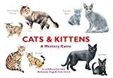 #4: Cats & Kittens: A Memory Game