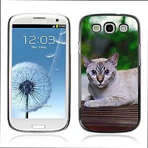 Super Stellar Slim PC Hard Case Cover Skin Armor Shell Protection // V0000938 Cat Kitty Animal Pattern // Samsung Galaxy S3 i9300