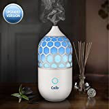 Calily Eternity Ultrasonic Essential Oil Diffuser Aromatherapy Review and Comparison