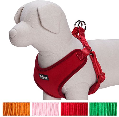Small Pet Harness Wiring Diagram Services