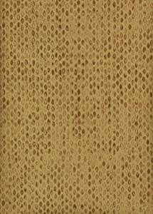 Blue Mountain Wallcoverings 687642 Echo Home a Collectors Home Wallpaper /Bronze/Gold/Light Brown/Orange