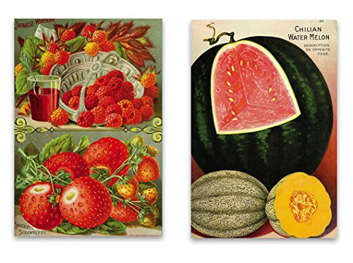 "Vintage Botanical Garden Fridge Magnet Set - 2""x3"" Magnets featuring Seed Catalog Illustrations of Fruit for Kitchen Art, Office Decor, Gardener Gift for Adults, Kids, Men & Women - Made - Sour Candy Of List"
