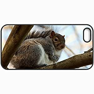 Customized Cellphone Case Back Cover For iPhone 5c, Protective Hardshell Case Personalized Squirrel Tree Branch Thick Black