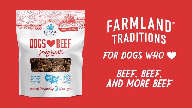 51CyEQOe4XL - Filler Free Premium Jerky Treats for Dogs