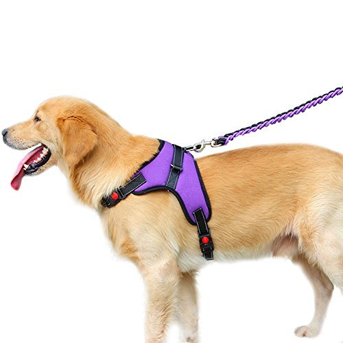 QBLEEV Pet Front Range All-Day Adventure Harness for Dog all Breeds Adjustable With Handle No Choke Non-Slip Excellent Training Walking Hiking No-Pull Outdoor (XL(CHEST 28.3