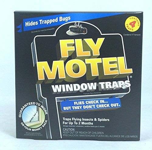 2 Pk, Black Flag Fly Motel Window Traps