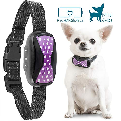 GoodBoy Humane Bark Collar for Small Dogs -...