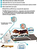GOPET PetRun PR720F Dog Treadmill Indoor