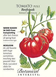 Beefsteak Tomato Heirloom Certified Organic Seeds
