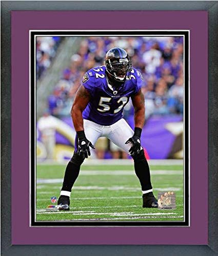 Ray Lewis Baltimore Ravens Action Photo (Size: 13