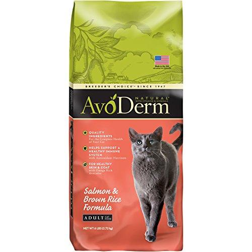 AvoDerm Natural Salmon & Brown Rice Formula Dry Cat Food, 6-