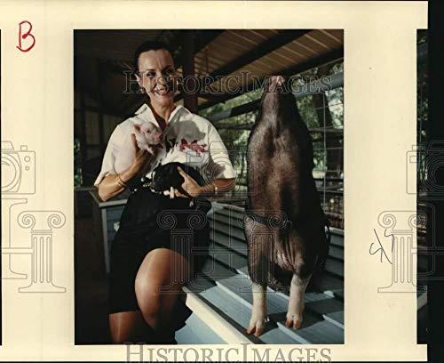 1991 Press Photo Sylvia Rizk with her Vietnamese potbellied pigs, Schulenburg-TX