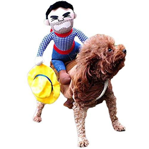 Bumble Bee Costumes For Horses (Coldtoy Funny Riding Horse Cowboy Dog Pet Costumes, For Puppy Halloween Party Costume Clothes (S))