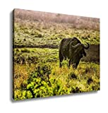 Ashley Canvas, Buffalo Proudly Standing On African Savanna Kenya, Home Decoration Office, Ready to Hang, 20x25, AG6344425