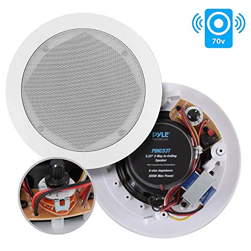 Ceiling and Wall Mount Speaker - 5.25