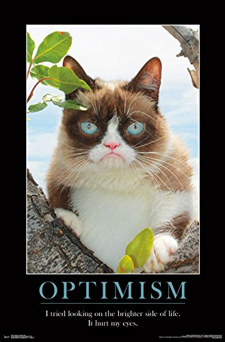 Trends International Grumpy Cat Brighter Side Wall Poster, 22.375