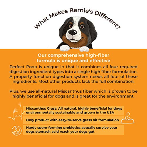 Bernie's Perfect Poop Digestion & General Health Supplement for Dogs: Fiber, Prebiotics, Probiotics & Enzymes Relieves Digestive Conditions, Optimizes Stool, and Improves Overall Health & Wellness
