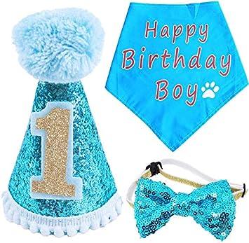 BIPY - Gorro de Primer cumpleaños para Perro, para niña ...