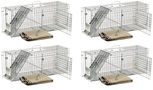 (Havahart 1099 Feral Stray Cat Rescue Kit (Pack of 4))