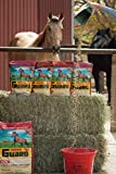 Horse Guard Equine Vitamin Mineral Supplement, 10lb