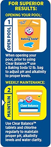 Amazon.com: Arm & Hammer Clear Balance Pool Maintenance Tablets: Garden &  Outdoor