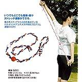 ミズノ パーソナルフィットネス・楽体 (らくだ) DVD付