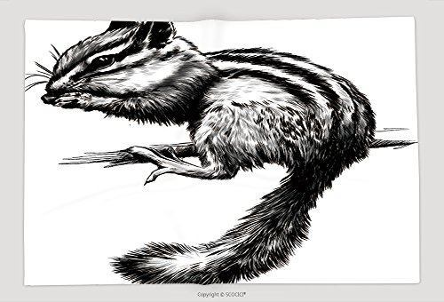 Supersoft Fleece Throw Blanket Chipmunk Sitting On A Branch Black And White Vector Sketch 549180313