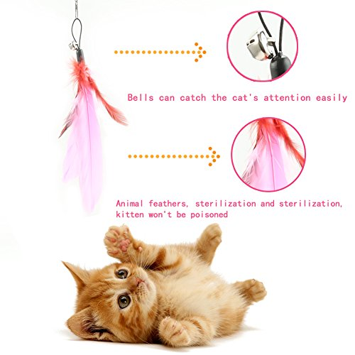 Retractable wand multi feather teaser and exerciser for for Retractable cat toy