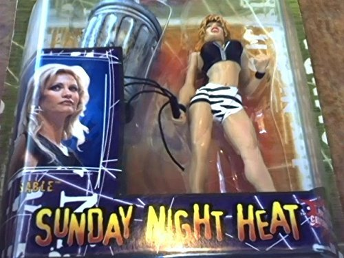 1999 Jakks Pacific  Inc Jakks Pacific Wwf Sable Sunday Night Heat Action Figure Toy Asst   80480 Item 80483 W Includes Nine Tail Whip   Crushable Trashcan