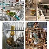 Bird Food Holder Stainless Steel Fruit Vegetable