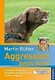 Aggression beim Hund: Ursachen erkennen, Verhalten verstehen und richtig reagieren