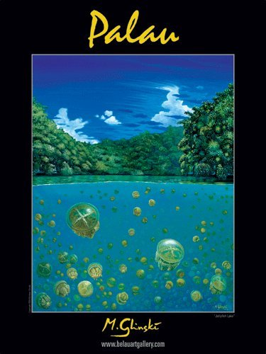 Palau, Jellyfish Lake Art Poster by Michael Glinski