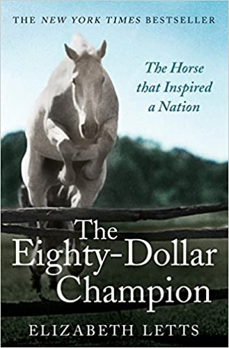 Image result for eighty dollar champion