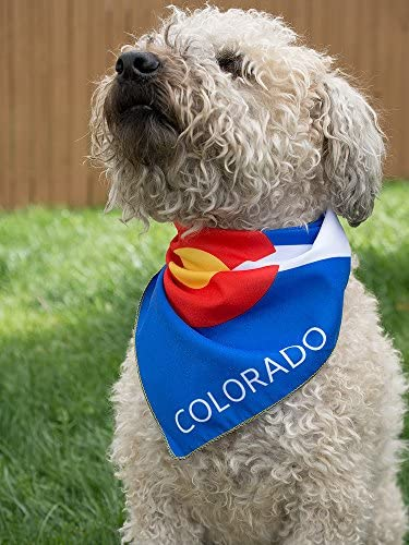Colorado Flag Dog Bandana in 2 Sizes