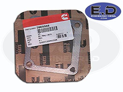 (Intake Horn Gasket - Cummins 5.9L - 1989 - 2007 - 3969988)