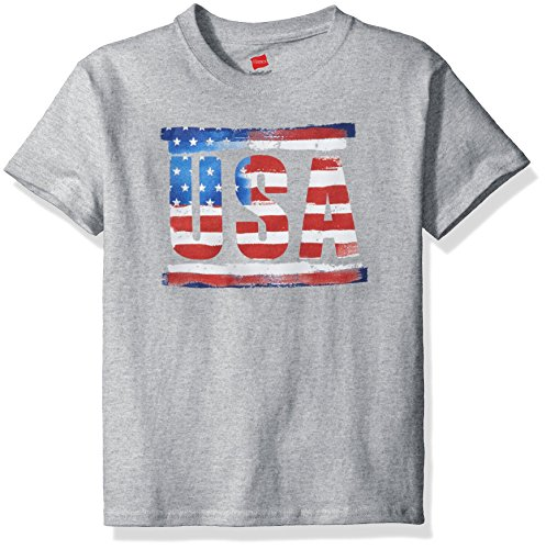 Hanes Short Sleeve Graphic T Shirt