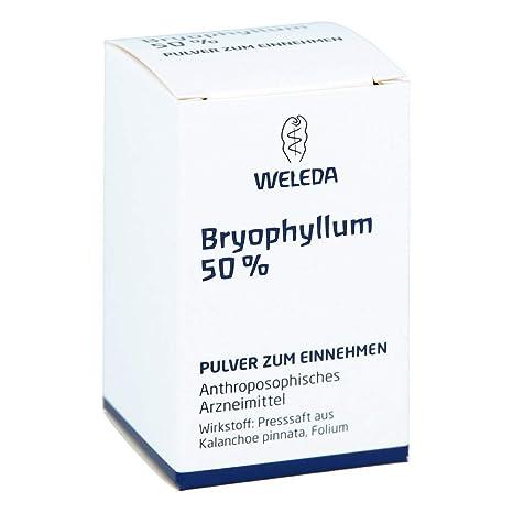 BRYOPHYLLUM 50% de polvos para ocupar el 20 g de polvo