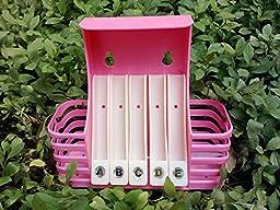 JinRou ontemporary Creative Fashion Bathroom Wall-mounted racks (Toothbrush holder) , Pink