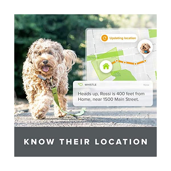 Whistle Go Explore - Ultimate Health & Location Tracker for Pets - Waterproof GPS Pet Tracker, Built-in Night Light, 20… 5