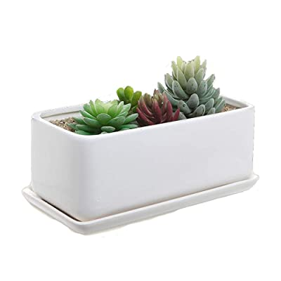 """shamoluotuo White Ceramic Succulent Planter Pots with Saucers Drainage Plug Rectangle Modern Minimalist Flower Plant Containers for Indoor Planter Planter Office Desk Window (10"""", White) : Garden & Outdoor"""
