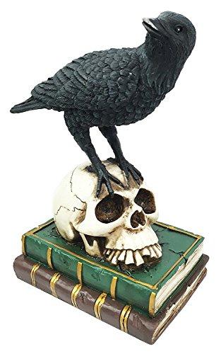 Raven Crow Bird Perching On Sorcerer Skull Spell Book of Wisdom Figurine Home Decor Bibliography Skeleton Sculpture Halloween (Raven Prop)