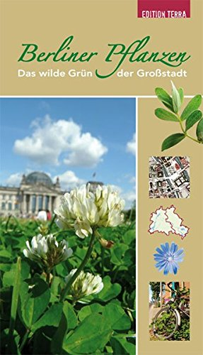 Berliner Pflanzen: Das wilde Grün der Großstadt
