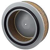 6.4139.0 Kaeser Air Filter Element Replacement