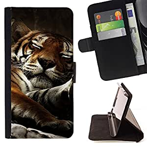 Momo Phone Case / Flip Funda de Cuero Case Cover - Tigre so?oliento del gato grande lindo Naturaleza Animal - LG G2 D800