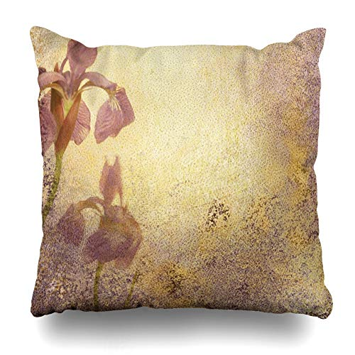 (Ahawoso Throw Pillow Cover Botanical Purple Royal Iris Abstract Stationary Flowery Watercolor Aged Announcement Antique Bloom Home Decor Cushion Case Square Size 18 x 18 Inches Zippered Pillowcase)