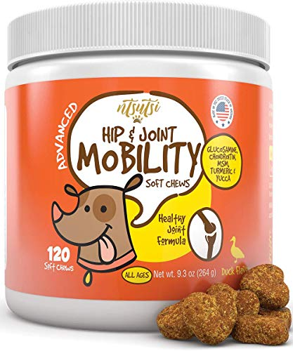 Glucosamine Chondroitin Joint Supplement for Dogs - Advanced Natural Dog Arthritis and Pain Relief - Hip and Joint Health for Senior Dogs - MSM, Glucosamine HCL, All Breeds & Sizes - 120 Soft Chews