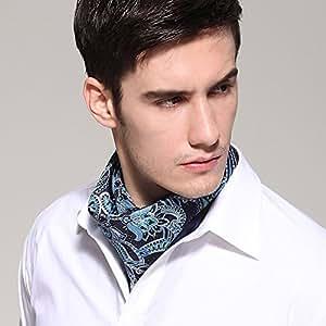 Corbatas YIXINY Pajarita Seda Hombre Bufanda De Camisa 53 * 53CM 8 Colores (Color : 2)