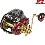 Daiwa Seaborg Megatwin SB800MJ Power Assist Reel from Daiwa