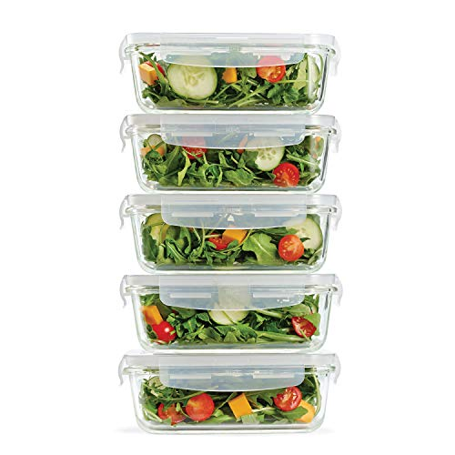 Fit & Fresh Glass Containers, Set of